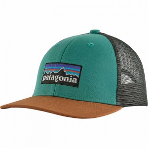 Patagonia Trucker Hat Kids'